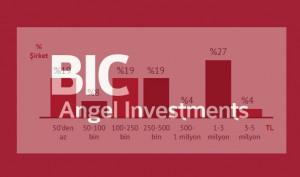 BIC-Angel-Inv_Arastirma2015